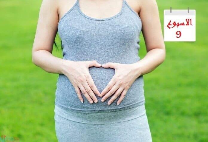 اعراض الحمل في الاسبوع التاسع