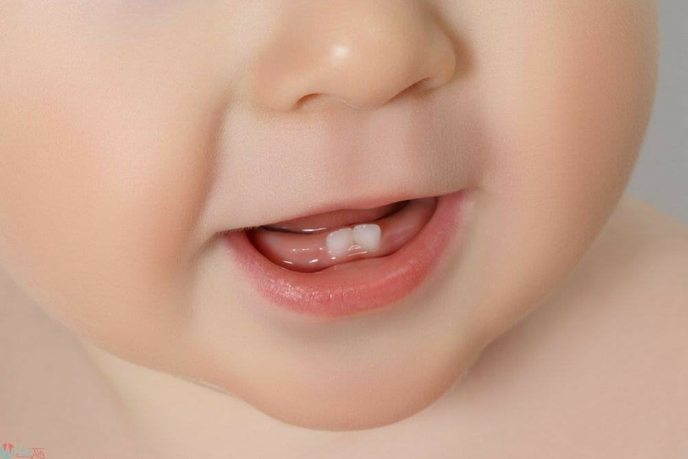 ترتيب ظهور الأسنان للرضع 2