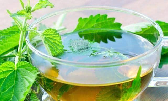 هل الشاي آمن اثناء الحمل ؟ 22